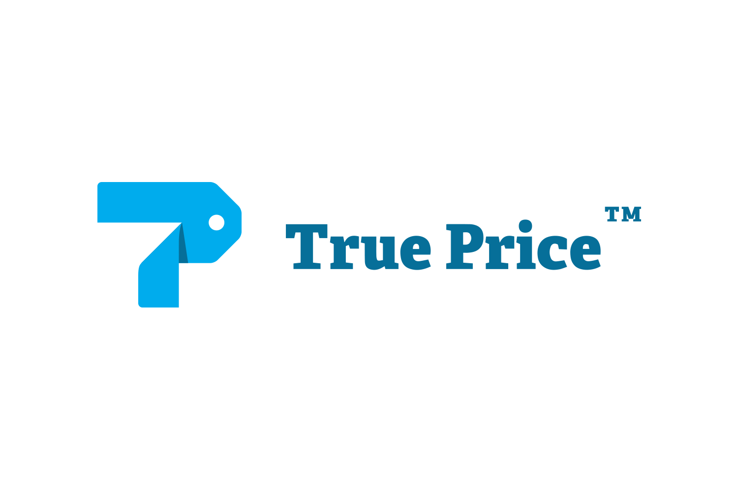 <em>True Price</em> is an organization that calculates the true price of products and services, quantifying their impact on society and the environment.